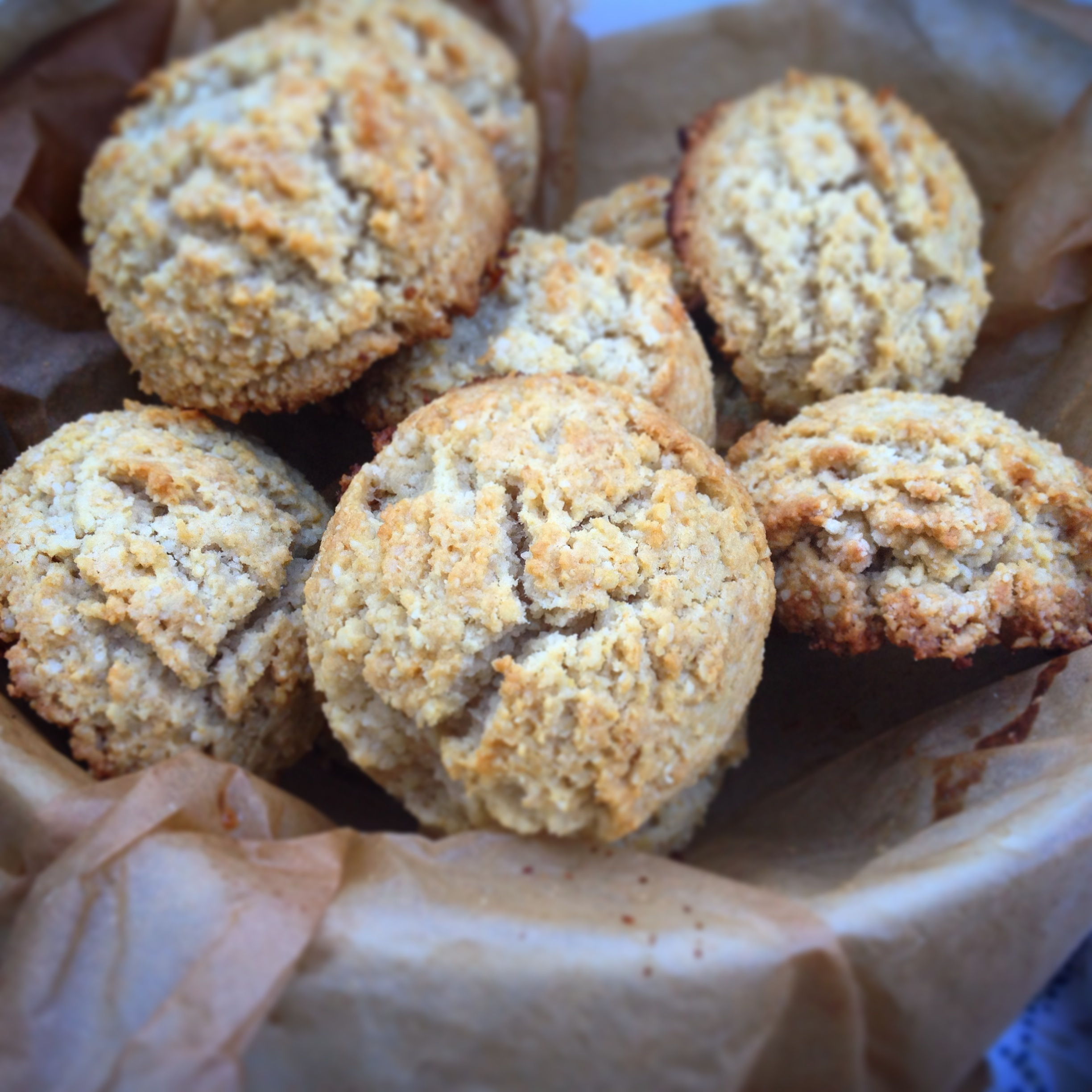 Zenbellly cookbook review and easy biscuit recipe